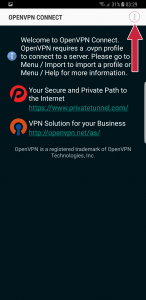 Option OpenVPN